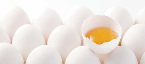واردات تخممرغی